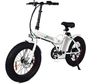 "Best Folding electric bike: ECOTRIC 20"" Fat Tire"